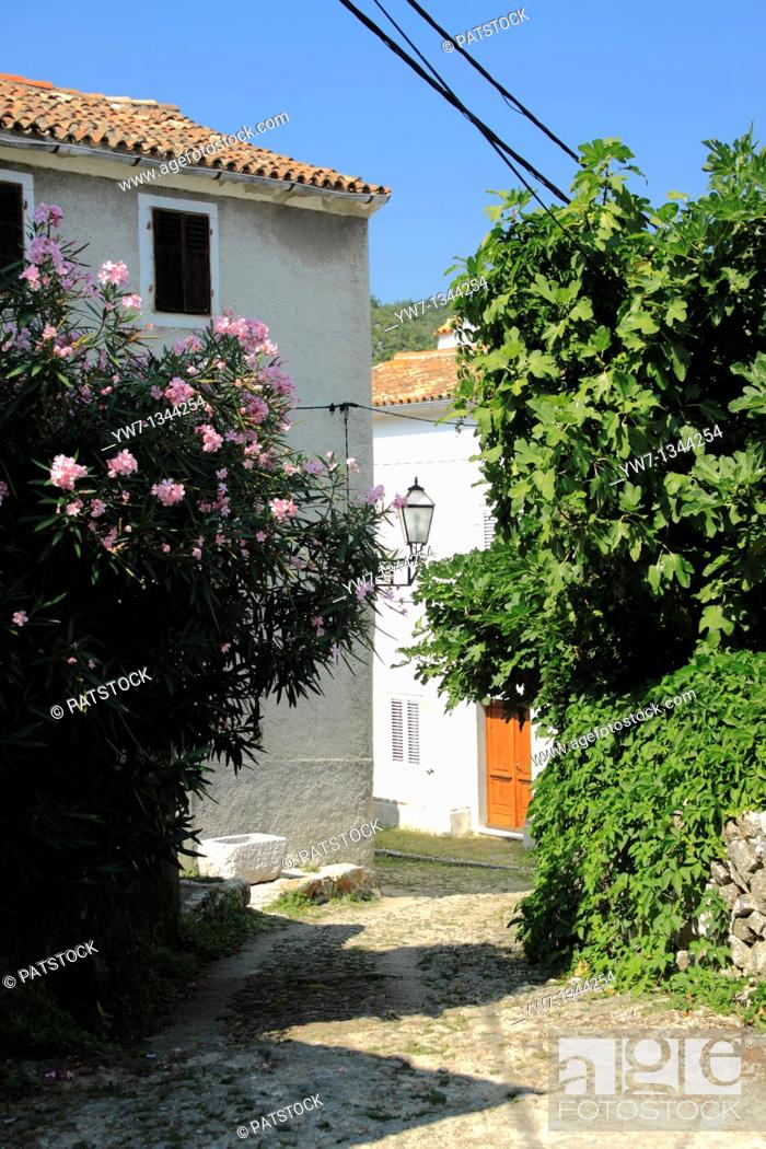 Stock Photo: Narrow street in Beli village on Cres Island, Croatia.