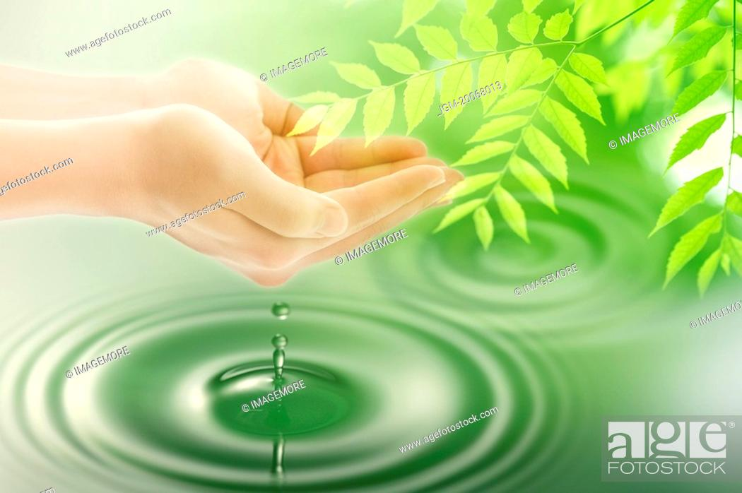 Stock Photo: Lohas, Environmental Conservation, Digitally generated image of human hands with green leaves and drops.