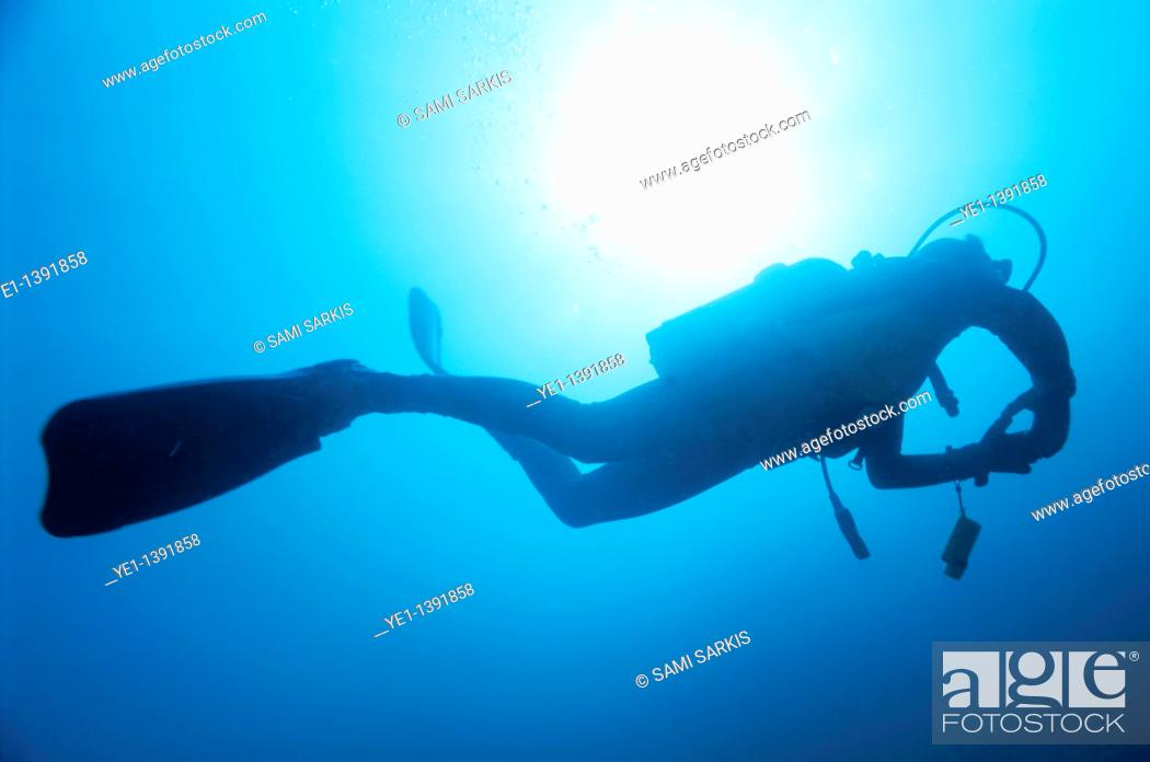 Stock Photo: France marseille diver silhouette from below.