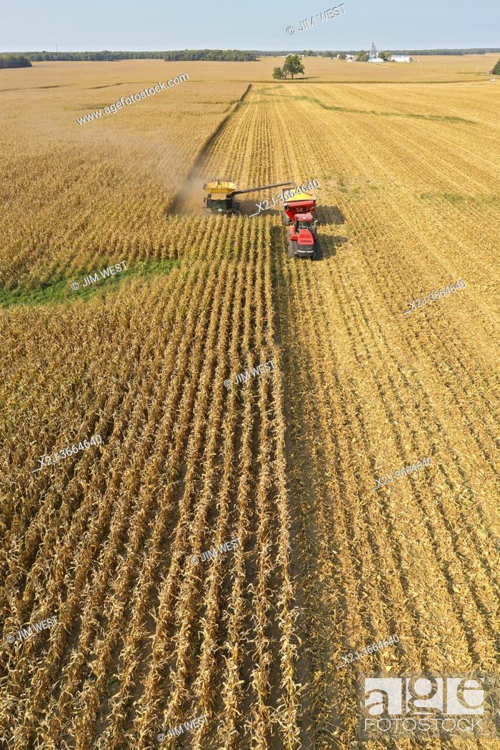 Stock Photo: Fitchville, Ohio - Corn harvest on Ohio farm.