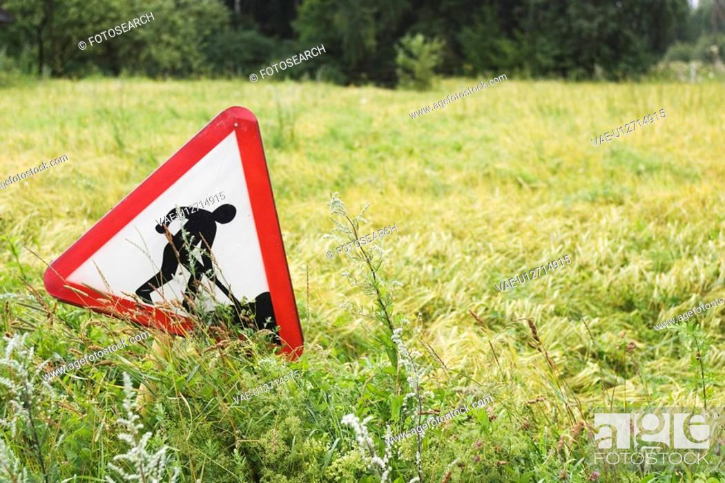 Stock Photo: Sign Board, Caution, Close-Up, Grass, Green.