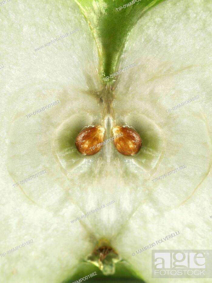 Imagen: Apple close up.