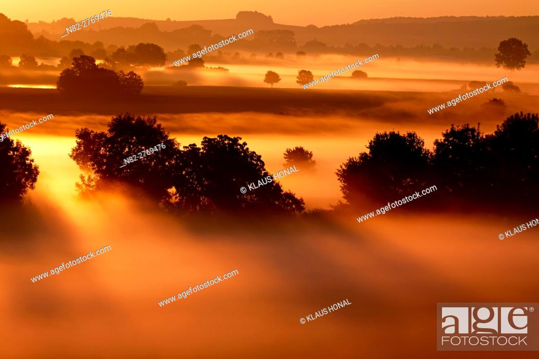 Stock Photo: Beautiful landscape in golden light. Sunrise in the riparian zones of the Woernitz river in fog - Hesselberg region, Bavaria/Germany.