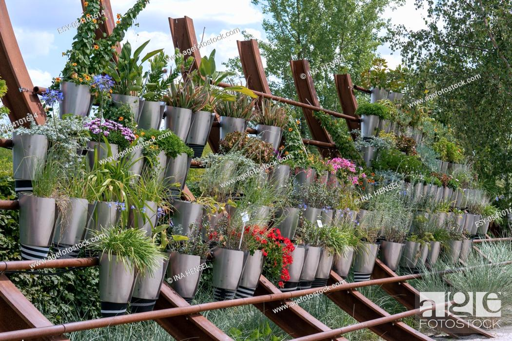 Stock Photo: Different blooming summer plants in silver pots arranged on a shelf outdoors.