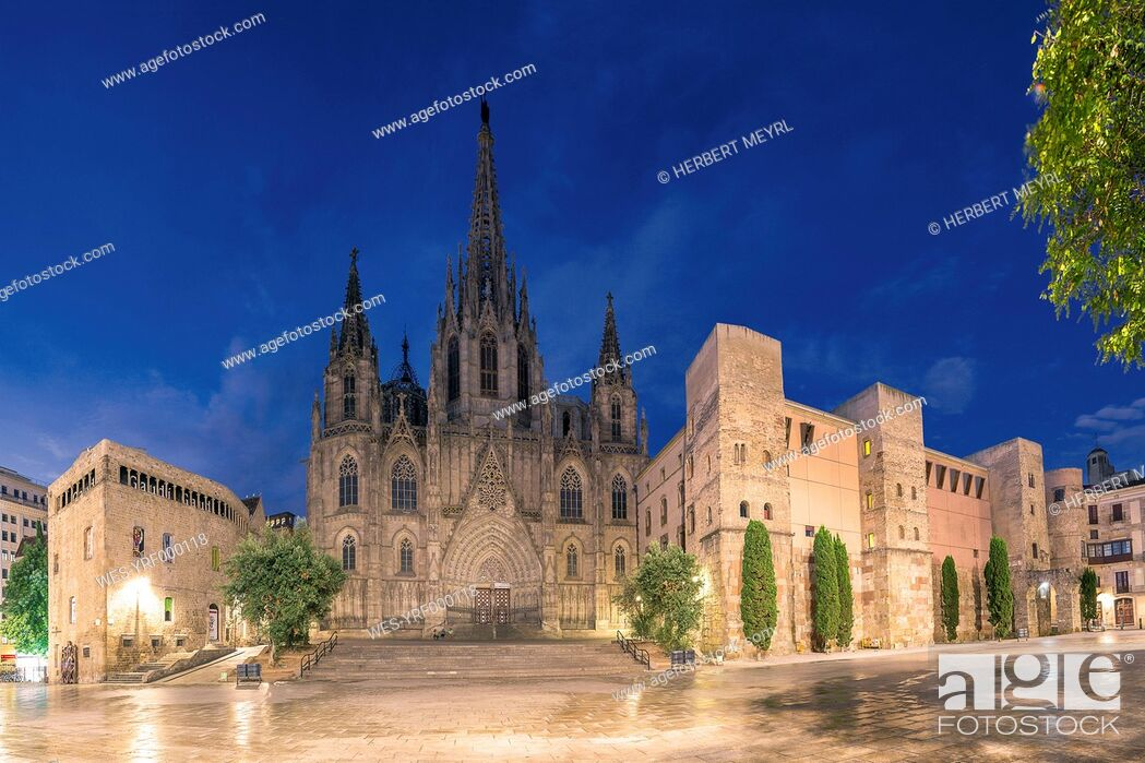 Stock Photo: Spain, Barcelona, Cathedral in the evening.