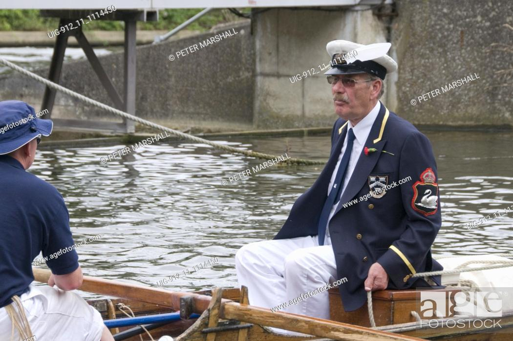 Stock Photo: Swan Upping, River Thames; Staines to Windsor, Swans are surrounded and caught by the uppers for recording and a quick health check,July 2008 UK.