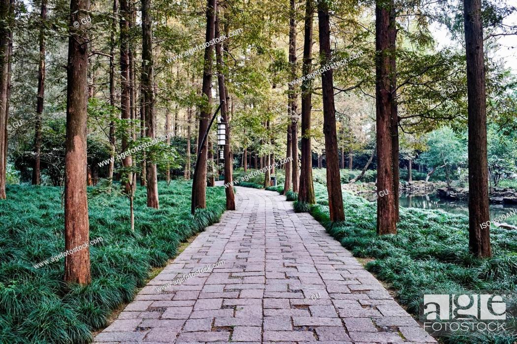 Stock Photo: Trees and park path, Westlake, Hangzhou, China.