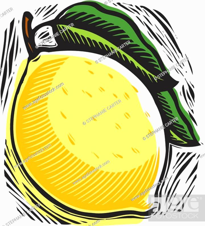 Stock Photo: fresh lemon.