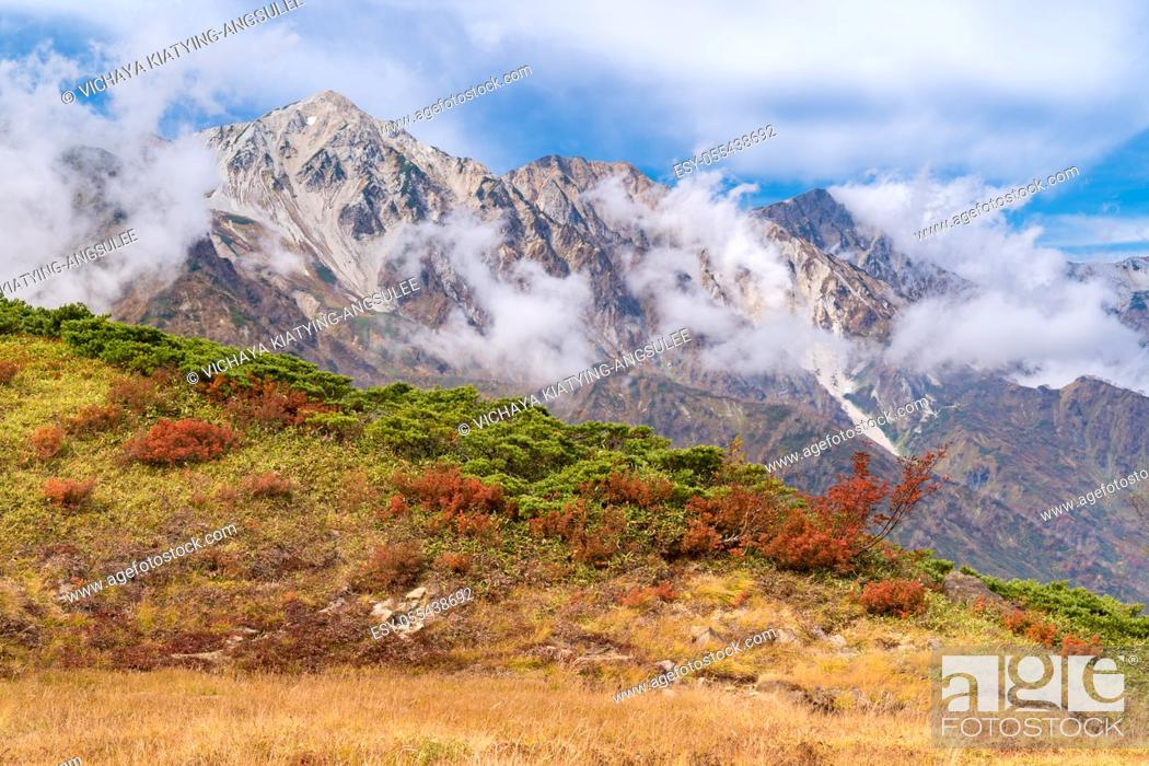Imagen: Landscape of Autumn Fall of Hakuba Valley in Nagano Chubu Japan.