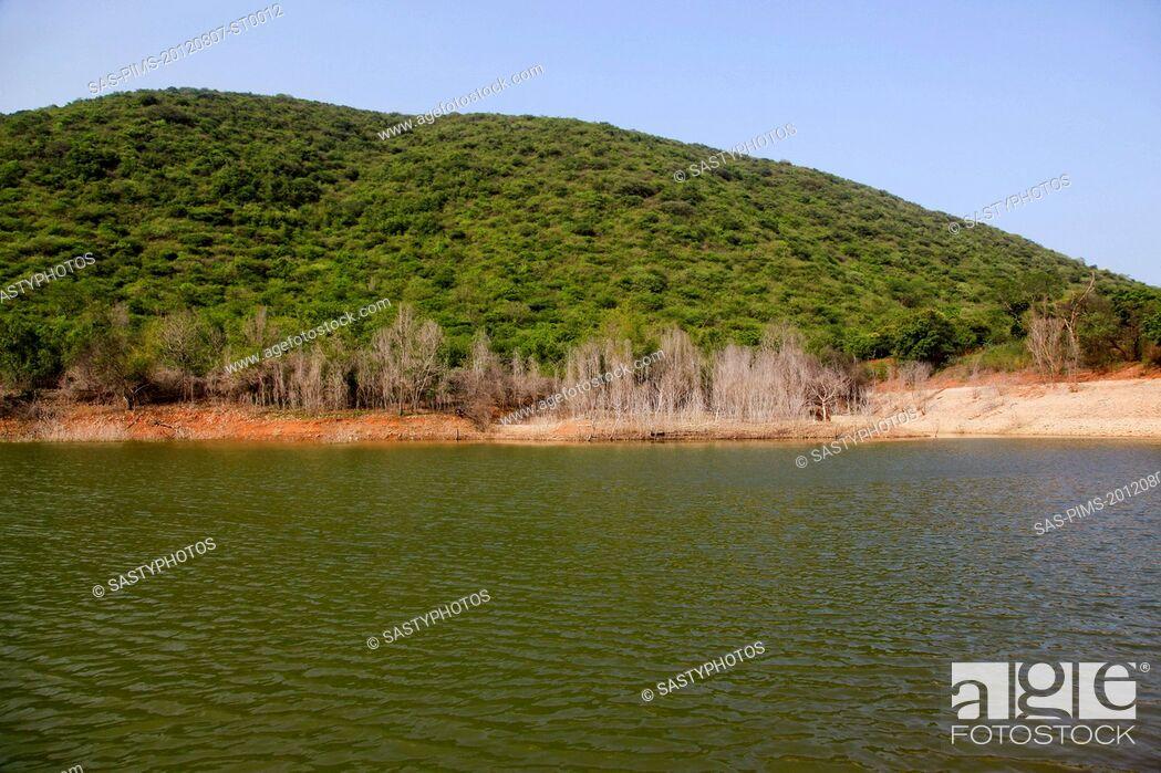 Stock Photo: Lake in a park, Kambala Konda Eco Tourism Park (Majjisrinath), Visakhapatnam, Andhra Pradesh, India.