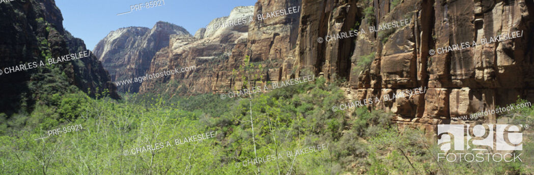 Stock Photo: Zion Canyon Zion National Park UT.