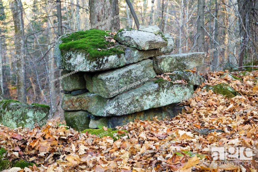 Photo de stock: Abandoned stone work along an old road in Benton, New Hampshire. This road is located off the North and South Road (now Long Pond Road).