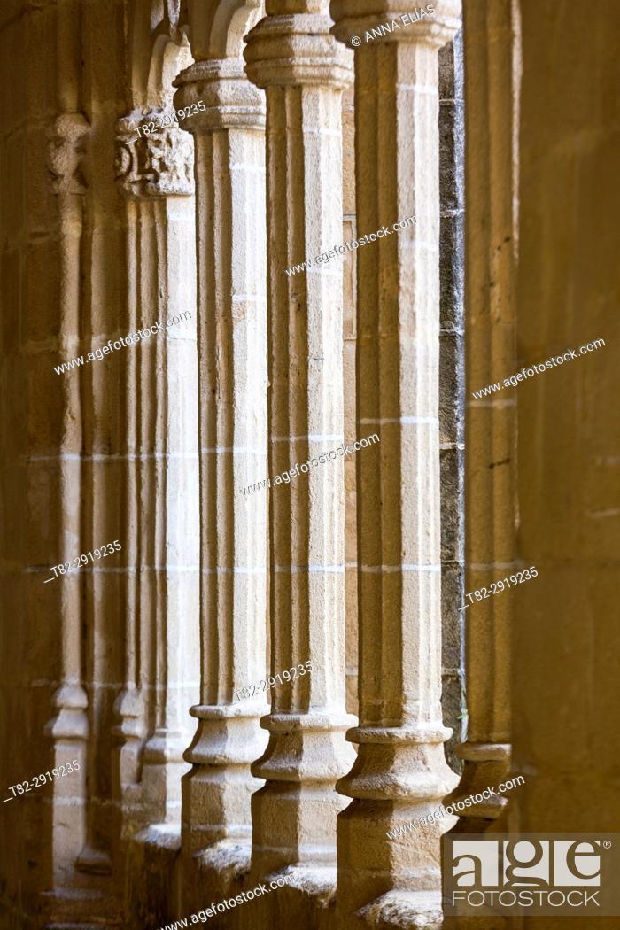 Stock Photo: Gothic columns, The Cloisters of Santo Domingo, Jerez de la Frontera, Cadiz, Andalucia, Contact Us, Euuropa.