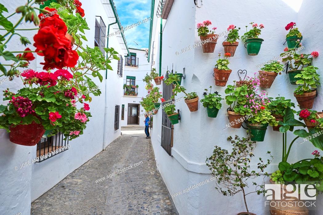 Stock Photo: Flowerpots in Barrio de la Villa (old quarter), Priego de Cordoba, Sierra de la Subbetica, Route of the Caliphate, Cordoba province, Andalusia, Spain.