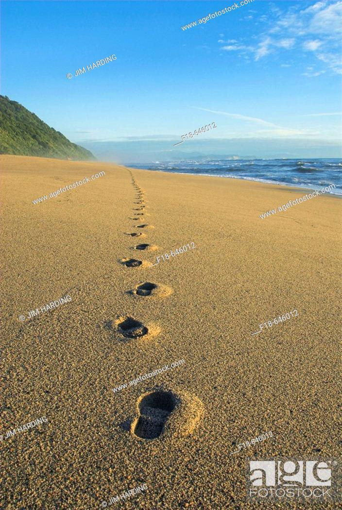 Stock Photo: Footprints in the sand, Kohaihai Beach, Karamea, New Zealand.