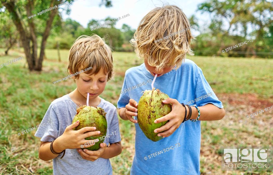 Stock Photo: Brazil, Bonito, two boys drinking from coconut with straws.