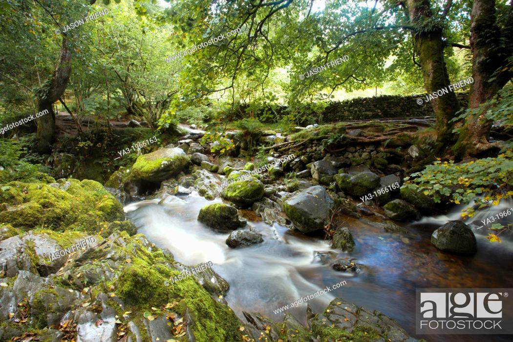 Stock Photo: England, Cumbria, Lake District National Park. Aira Beck above Aira Force, a powerful body of water near the shores of Ullswater.