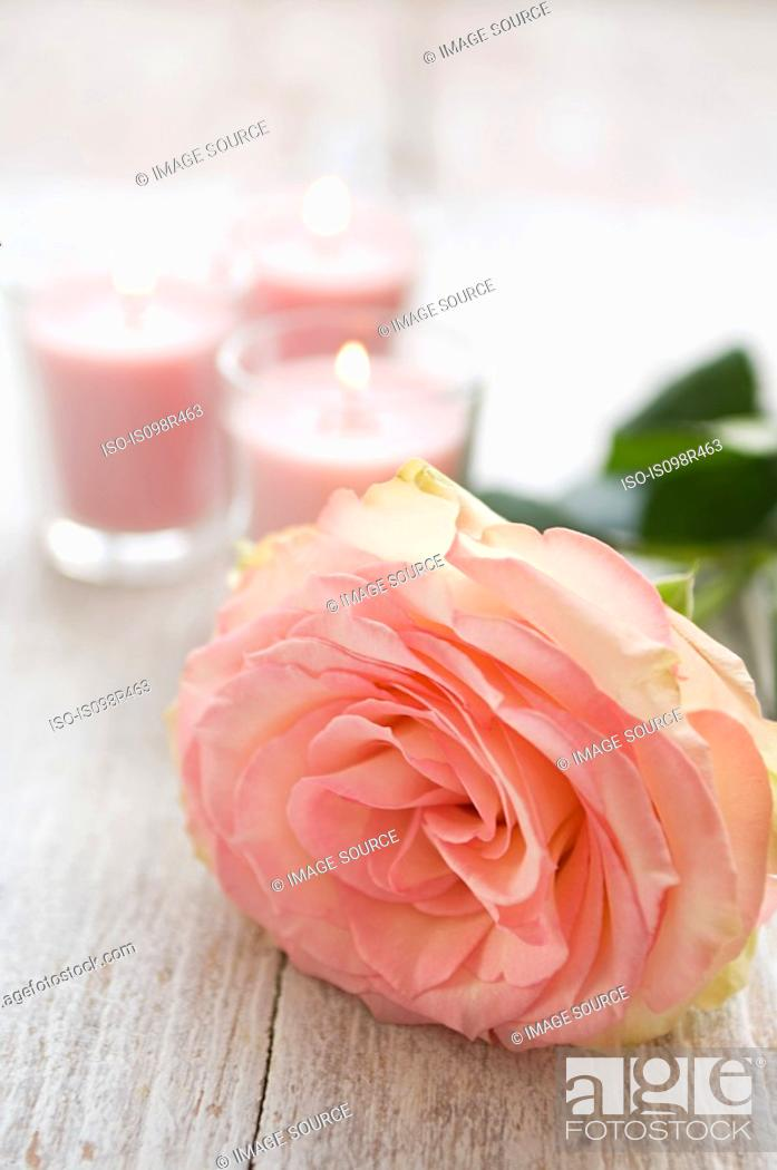 Stock Photo: Rose and candles.