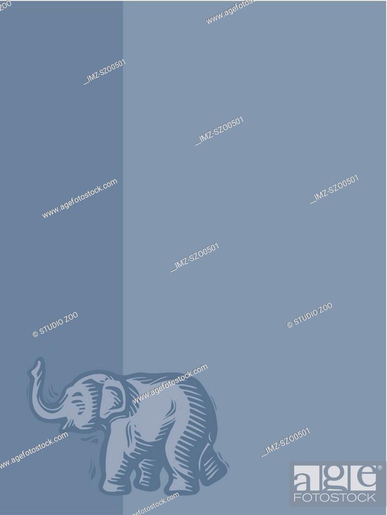 Stock Photo: Elephant on blue background.
