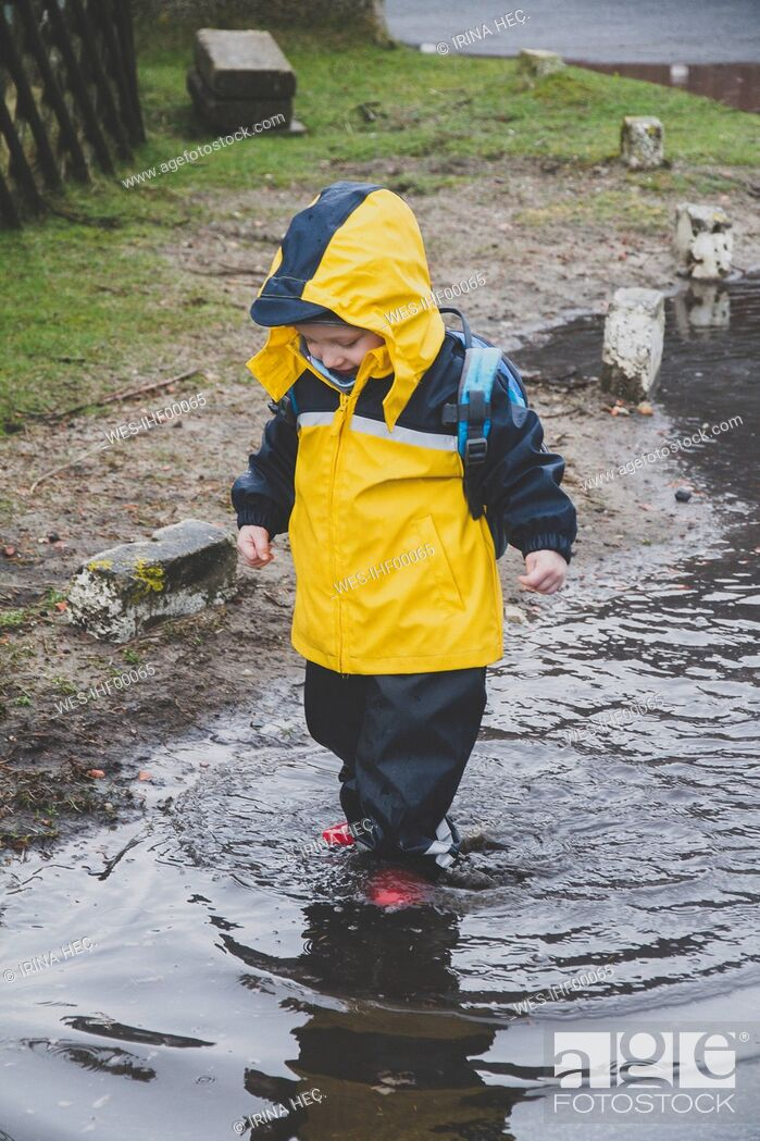 Stock Photo: Little boy in a rainsuit exploring a puddle, Sylt, Germany.