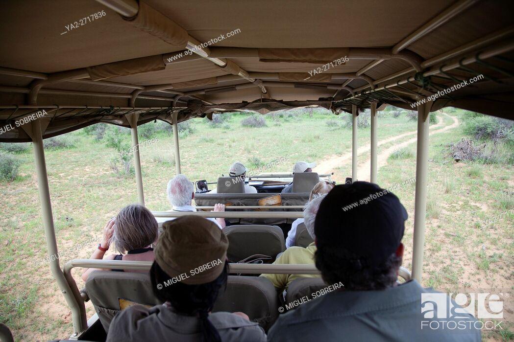 Imagen: Game Drive in Okinjima in Namibia.