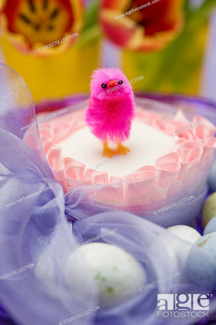 Stock Photo: close up of single pink chick on top of a square easter cake tied with a purple chiffon bow surrounded by chocolate eggs and red and yellow tulip flowers.
