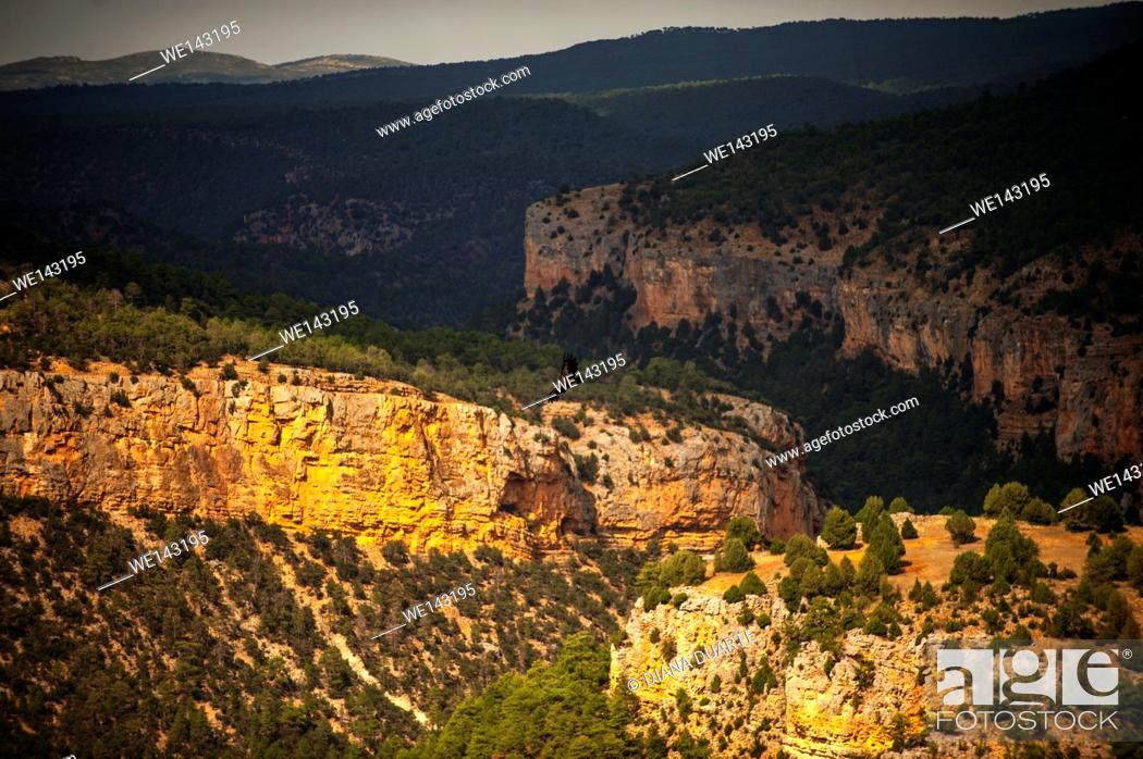 Stock Photo: It has exceptional importance for the conservation of biodiversity. Alto Tajo Natural park, Guadalajara, Spain.
