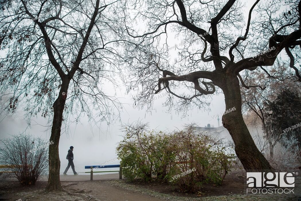 Stock Photo: Tourist. City Park at fog. Budapest Hungary, Southeast Europe.