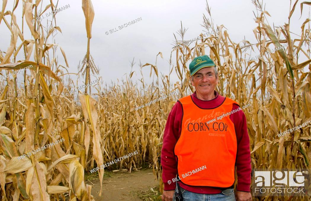 Imagen: Farmington Maine fall activity Corn Maze in field with corn stalks and man in charge called Corn Cop in Northern New England in October.