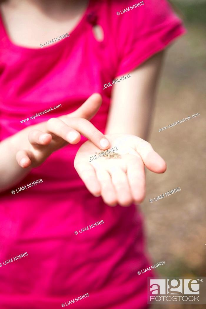 Stock Photo: Young girl holding seeds.