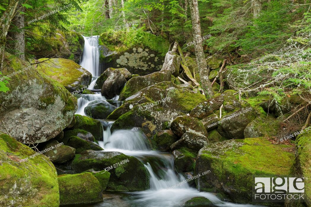 Stock Photo: Cascade #7 on Cold Brook in Low and Burbank's Grant, New Hampshire during the summer months. The 1908 map of the Northern Peaks of the White Mountains by Louis.