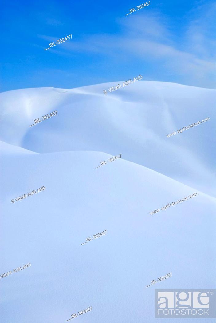 Stock Photo: Winterlandscape.