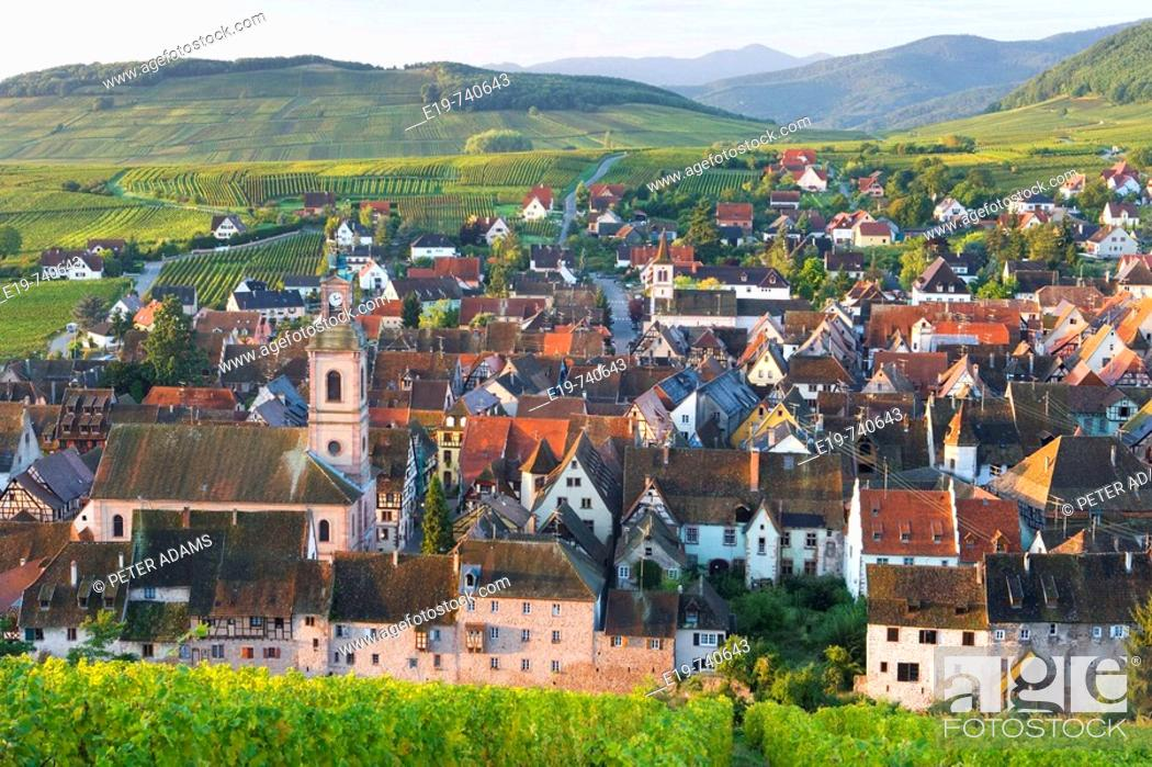 Stock Photo: Old wine town of Riquewihr & vineyard, Alsace, France.