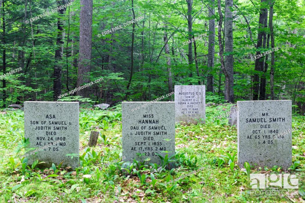 Stock Photo: Colonel Lewis B. Smith site in Sandwich Notch in Sandwich, New Hampshire USA. This abandoned farmstead was occupied by three generations of the Smith family.