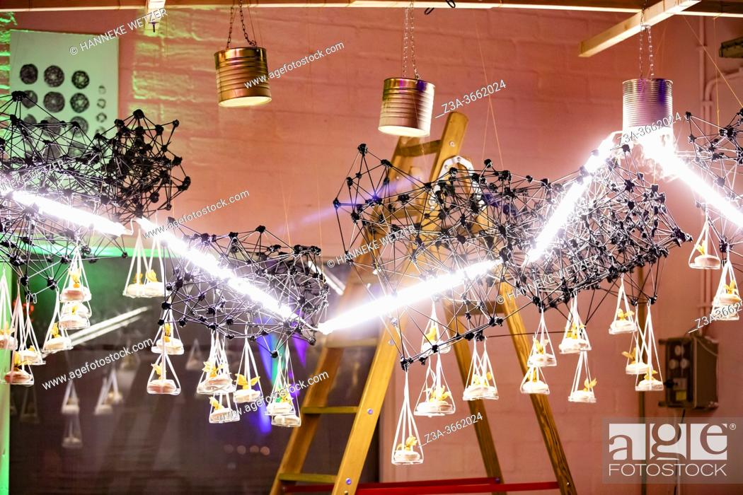 Photo de stock: Lighted design cloud construction with vapor of liquid nitrogen as a decor for the presentation of desserts, Strijp-S, Eindhoven, The Netherlands, Europe.