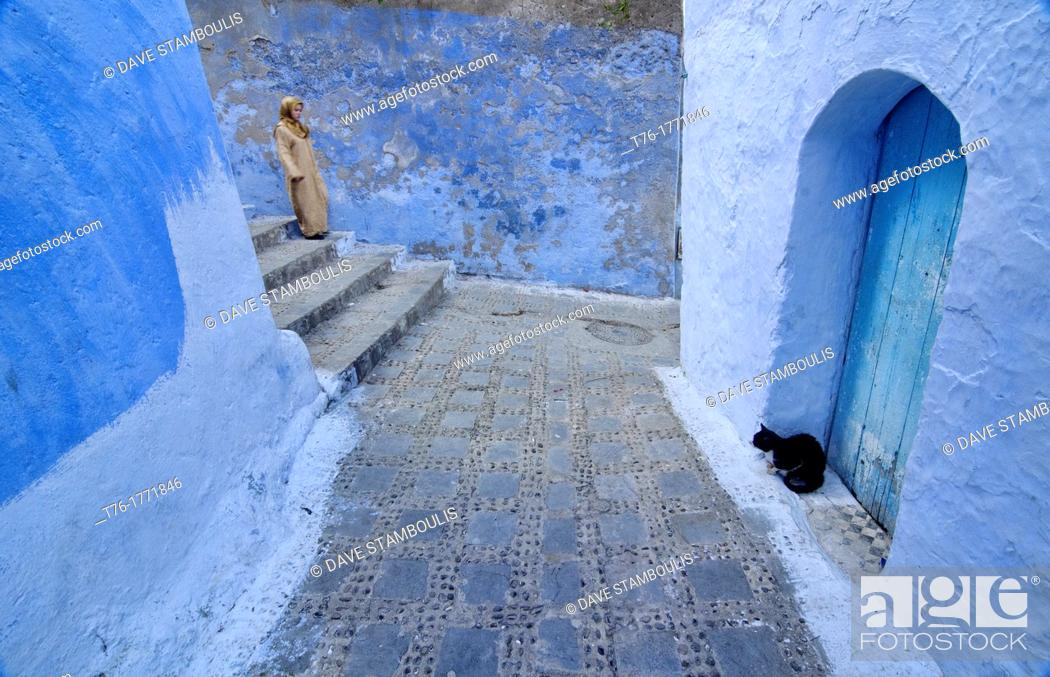 Imagen: A cat at the door in the blue town of Chefchaouen, Morocco.