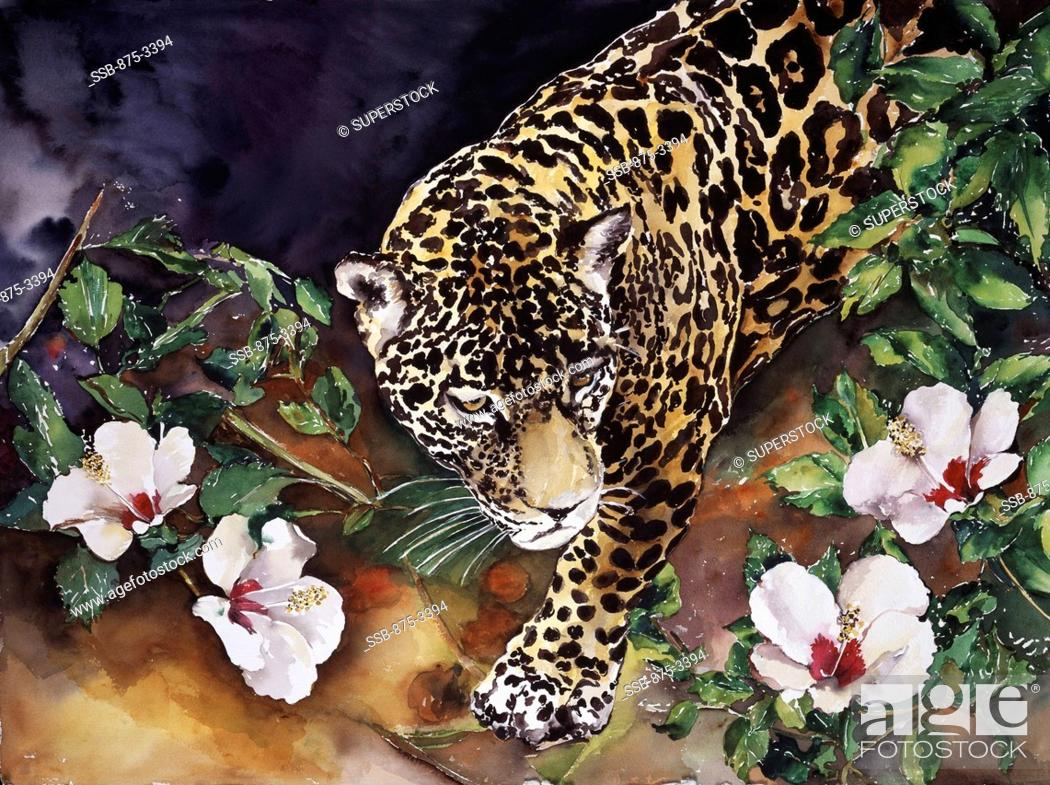 Stock Photo: Jaguar with Hibiscus, 2000, John Bunker 20th C./American, Watercolor.