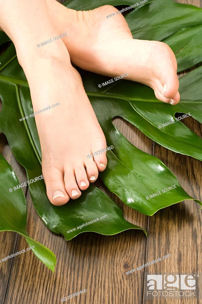 Stock Photo: Female feet on leaf.