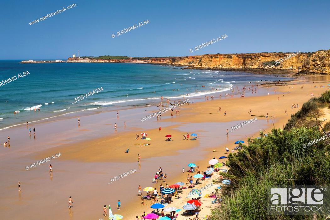 Stock Photo: Fuente del Gallo beach, Conil de la Frontera, Cadiz province, Andalusia, Spain.
