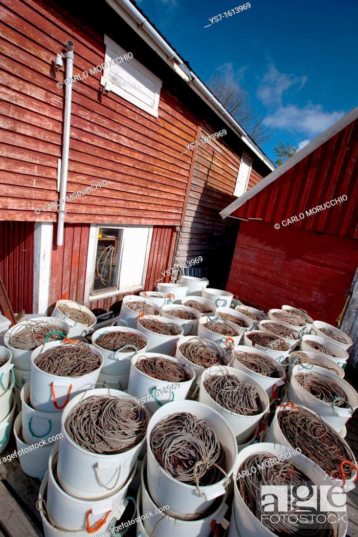 Stock Photo: Wire and fish hooks in the fishermen harbour of Sørvågen village, Moskenesøy island, Lofoten archipelago, Nordland county, Norway, Europe.