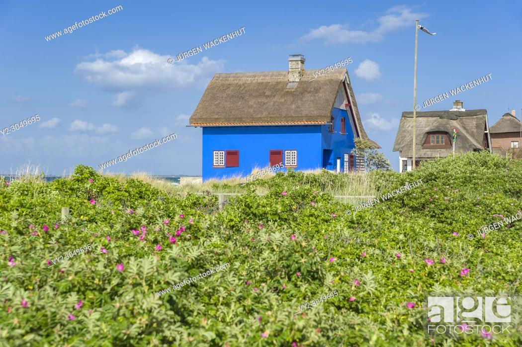 Imagen: Historic building on the peninsula Graswarder, Heiligenhafen, Baltic Sea, Schleswig-Holstein, Germany, Europe.