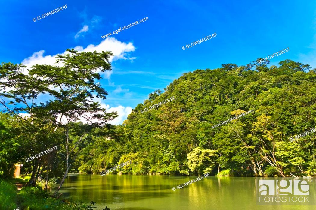 Stock Photo: River passing through a forest, Agua Azul Waterfalls, Chiapas, Mexico.