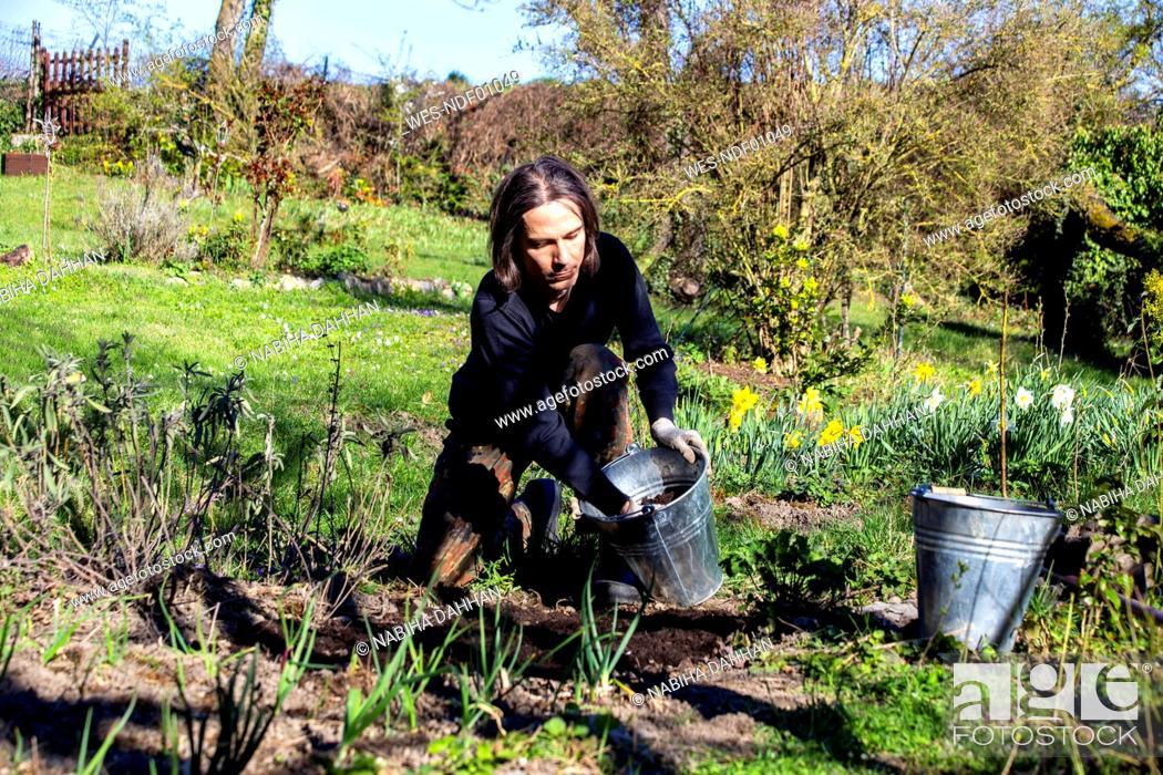 Stock Photo: Man working in organic garden during springtime.