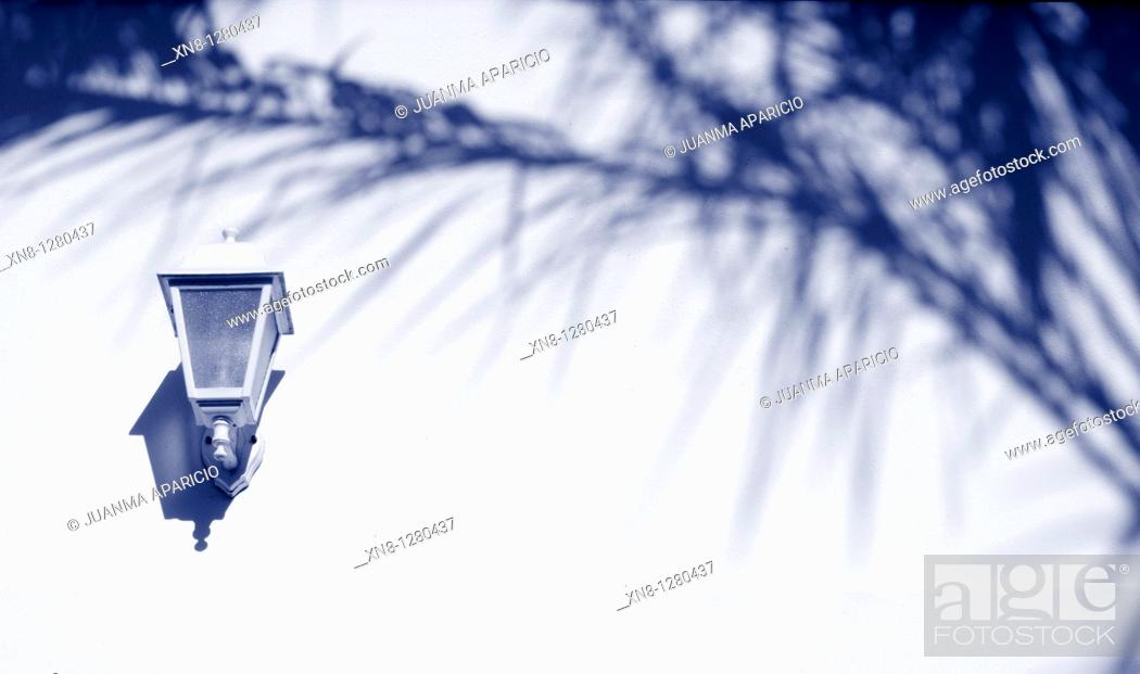 Stock Photo: Palm shadows on a white wall with lantern lighting.