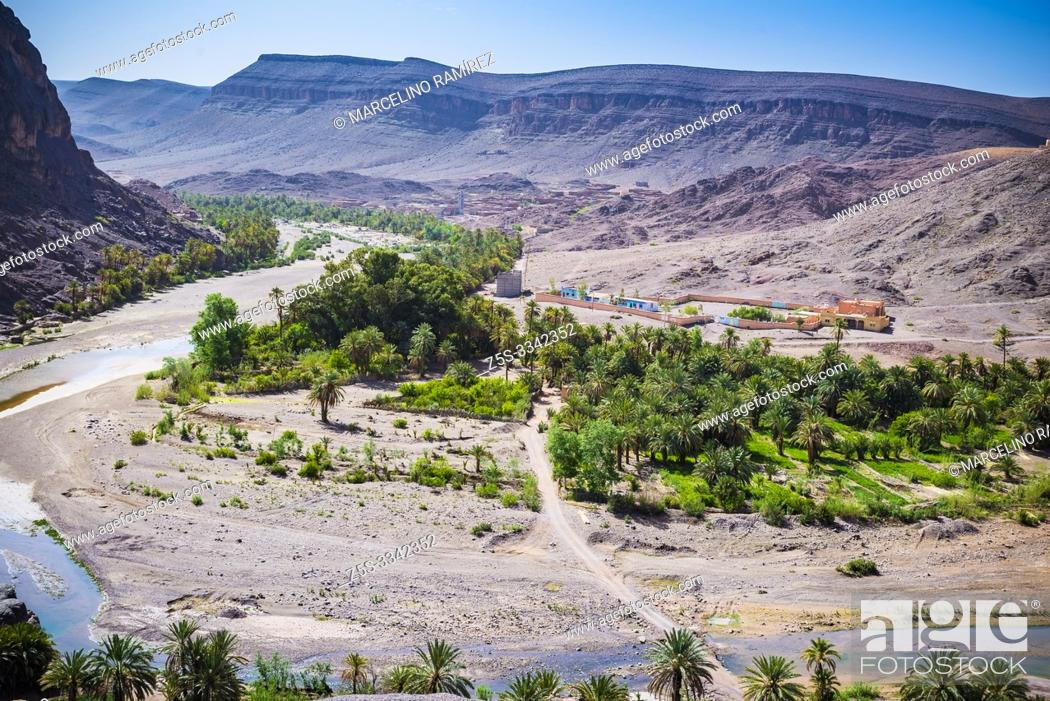 Imagen: The oasis of Fint in the stony desert. The so-called Door of the Sahara desert. Fint Oasis, Ouarzazate, Drâa-Tafilalet, Morocco, North Africa.