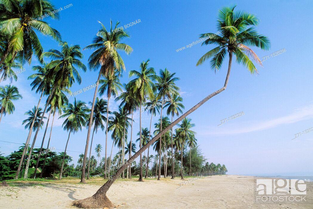 Stock Photo: Pantai Irama beach, Kota Bharu, Kelantan, Malaysia.
