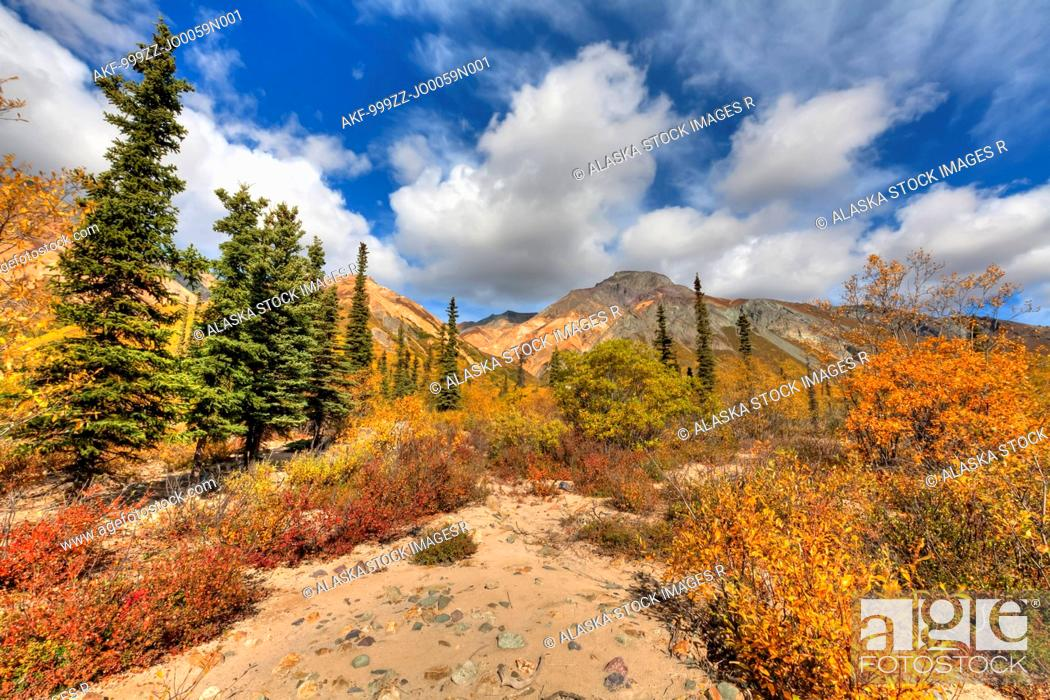 Stock Photo: Fall colors and a dry mountain stream bed at Sheep Mountain along the Glenn Highway in the Talkeetna Mountains, Southcentral Alaska, Autumn. HDR.
