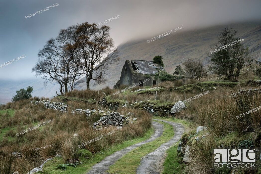 Imagen: View of drystone walls and abandoned farmhouse, Black Valley, Macgillycuddy's Reeks, Killarney, County Kerry, Munster, Ireland, November.