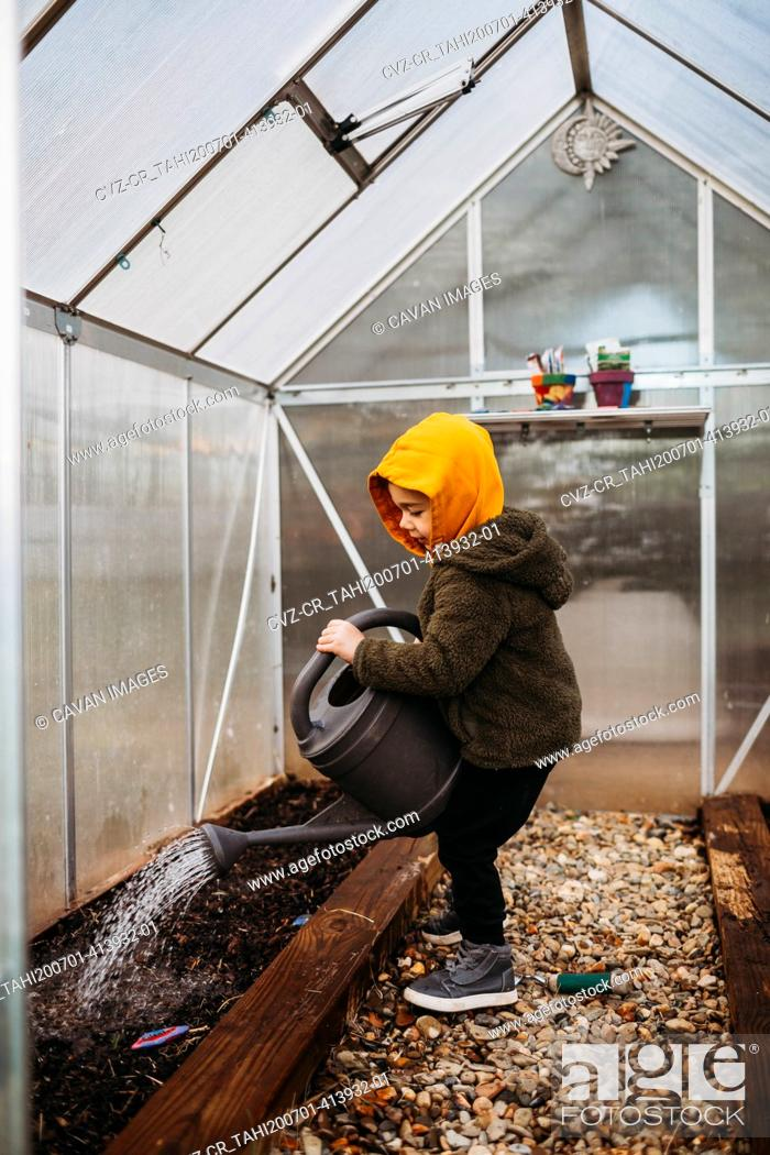 Stock Photo: Young boy watering seeds in backyard green house.
