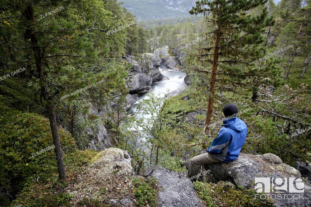 Stock Photo: Norway, More og Romsdal, Rauma, man in the forest above a river, Model Released.